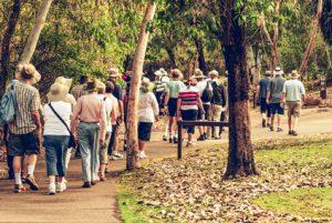 Gruppe von vielen Personen und Ältere, die zusammen walken, spazieren mit dem vgsu